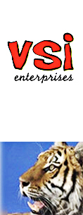 VSI Enterprises